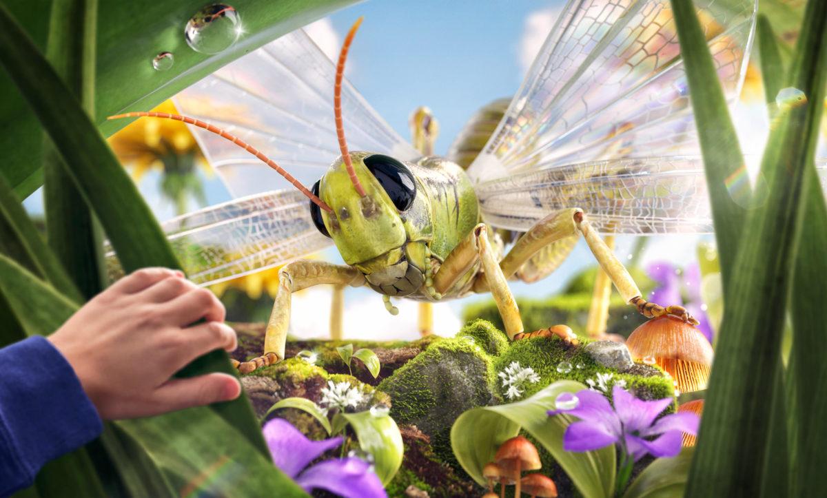Universeum Bugs